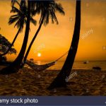 tropical paradise sunset 5 150x150 TROPICAL PARADISE SUNSET