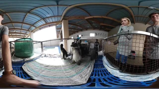 volunteering in africa 360 video virtual reality 20 Volunteering In Africa Virtual Reality