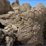 we accidentally found petroglyphs kyrgyzstan 13 150x150 We Accidentally Found Petroglyphs   Kyrgyzstan