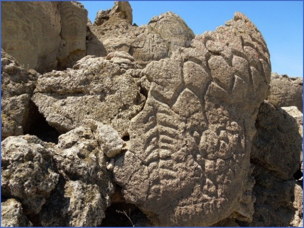 we accidentally found petroglyphs kyrgyzstan 13 We Accidentally Found Petroglyphs   Kyrgyzstan