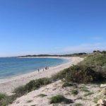 weekend beach camping trip 15 150x150 WEEKEND BEACH CAMPING TRIP