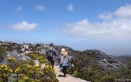 where to find the best views of cape town 29