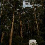 wild tasmania travel australia  10 150x150 Wild Tasmania   Travel Australia