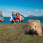 wild tasmania travel australia  3 150x150 Wild Tasmania   Travel Australia