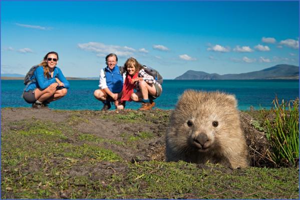 wild tasmania travel australia  3 Wild Tasmania   Travel Australia