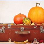 holiday travel transportation security administration 1 150x150 Holiday Travel Transportation Security Administration