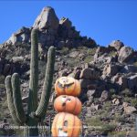 how to travel in arizona 5 150x150 How to Travel in Arizona