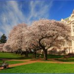 most beautiful college campuses in usa 5 150x150 Most Beautiful College Campuses in USA