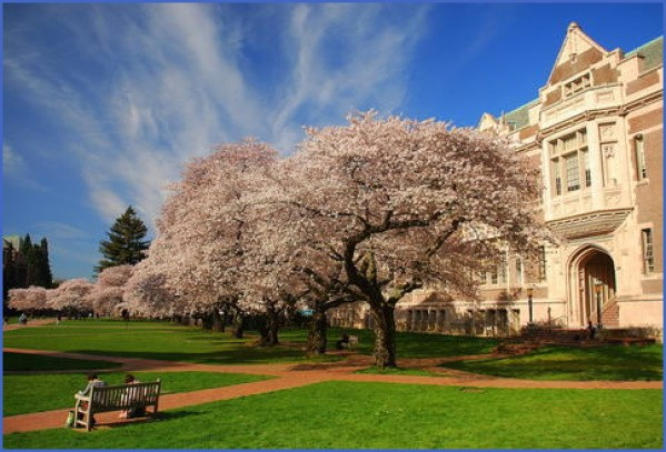 most beautiful college campuses in usa 5 Most Beautiful College Campuses in USA