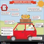safety tips when traveling 8 150x150 Safety Tips When Traveling