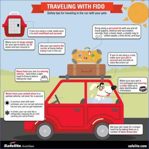 safety tips when traveling 8 Safety Tips When Traveling