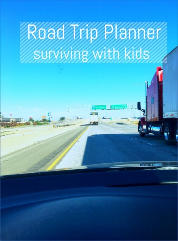 top 10 survival tips for holiday travel 10 Top 10 Survival Tips For Holiday Travel
