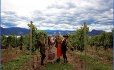 Winery Tours in USA_0.jpg
