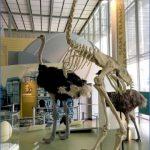 3 best san francisco museums 0 150x150 3 Best San Francisco Museums