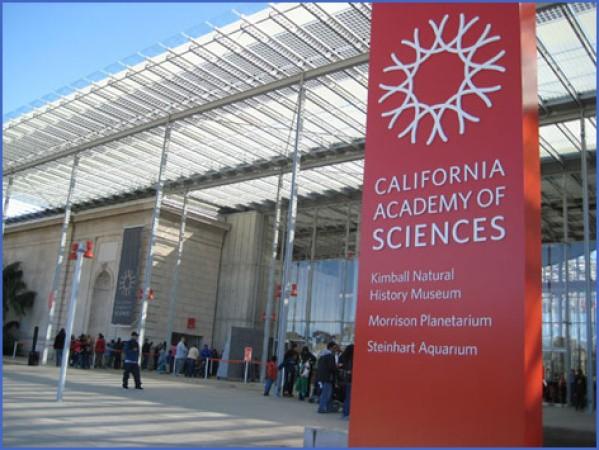 3 best san francisco museums 6 3 Best San Francisco Museums