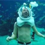atlantis shark safari experience in dubai 0 150x150 Atlantis Shark Safari Experience in Dubai
