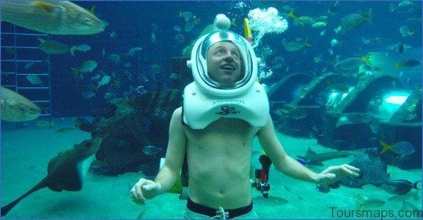 atlantis shark safari experience in dubai 0 Atlantis Shark Safari Experience in Dubai