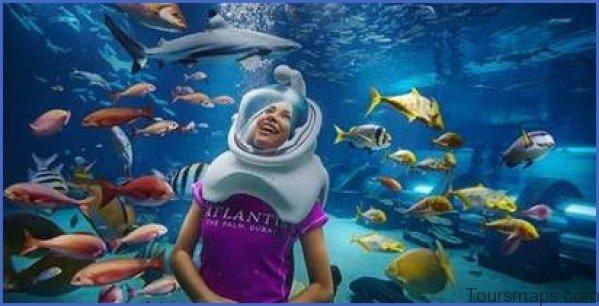 atlantis shark safari experience in dubai 10 Atlantis Shark Safari Experience in Dubai