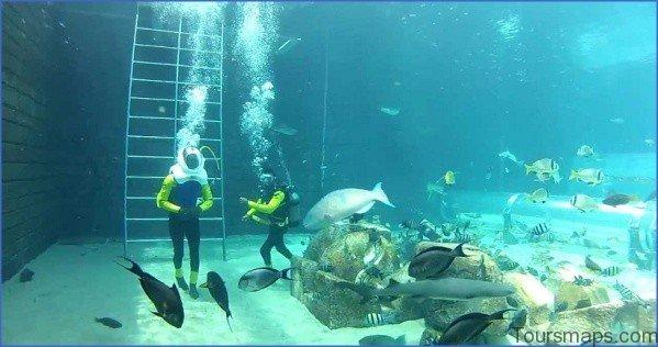 atlantis shark safari experience in dubai 3 Atlantis Shark Safari Experience in Dubai