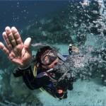 atlantis shark safari experience in dubai 7 150x150 Atlantis Shark Safari Experience in Dubai