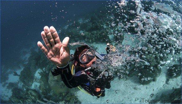 atlantis shark safari experience in dubai 7 Atlantis Shark Safari Experience in Dubai