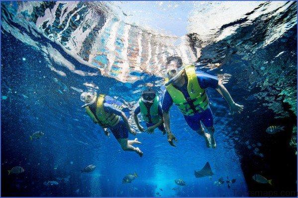 atlantis shark safari experience in dubai 8 Atlantis Shark Safari Experience in Dubai