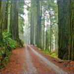 best city parks in usa 4 150x150 Best City Parks in USA