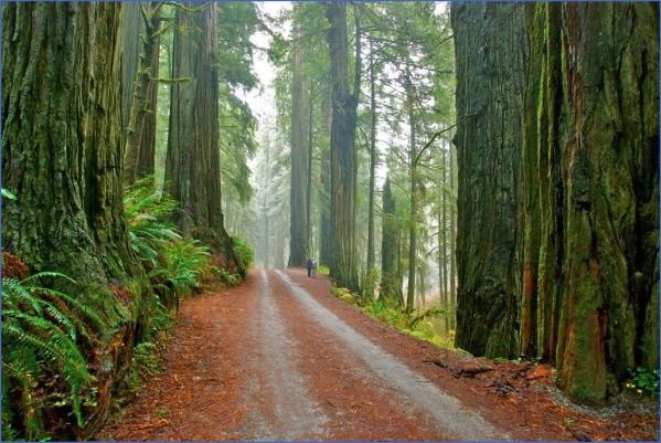 best city parks in usa 4 Best City Parks in USA