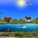 birds bears wildlife flora and fauna of the trail 6 150x150 BIRDS, BEARS & WILDLIFE FLORA AND FAUNA OF THE TRAIL