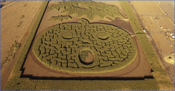 corn mazes in usa 10 Corn Mazes in USA