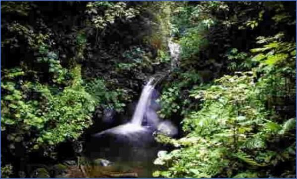 costa rica vacation guide 13 Costa Rica Vacation Guide