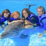 dolphin encounters in usa 10 150x150 Dolphin Encounters in USA