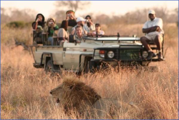 safaris in the u s a 9 Safaris in the U.S.A