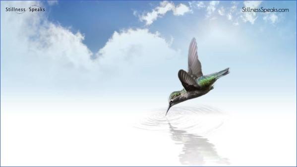 surrendering to stillness 13 Surrendering to Stillness