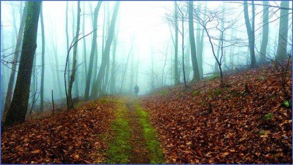 trail magic kindnesses 2 Trail Magic Kindnesses