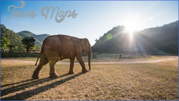 be kind thailand chiang mai 5317 e1533880322845 6 Travel Destinations You Should Explore in 2018 for Some Real Adventure