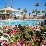 experience the good life in chandler arizona 9 150x150 Experience the Good Life in Chandler Arizona
