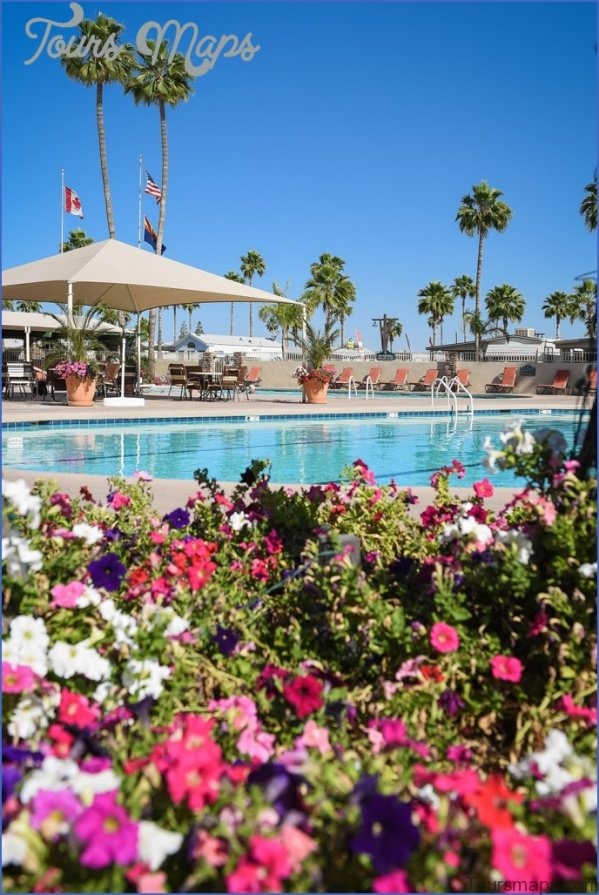 experience the good life in chandler arizona 9 Experience the Good Life in Chandler Arizona