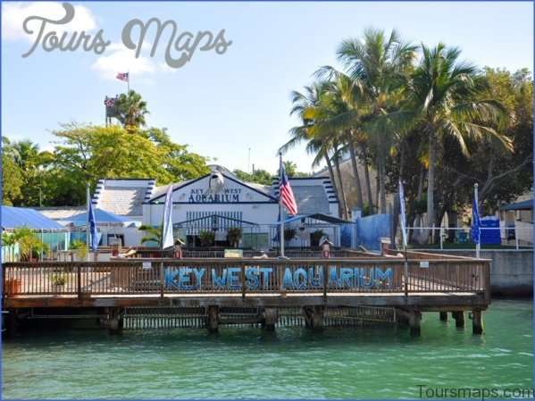 key west 6 Travel Destinations You Should Explore in 2018 for Some Real Adventure