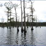 louisiana a fishermans paradise 13 150x150 Louisiana A Fishermans Paradise