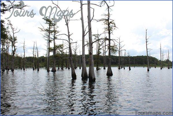 louisiana a fishermans paradise 13 Louisiana A Fishermans Paradise