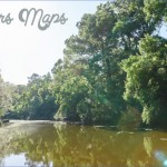 louisiana wetlands keeping it local in covington 14 150x150 Louisiana Wetlands Keeping it Local in Covington