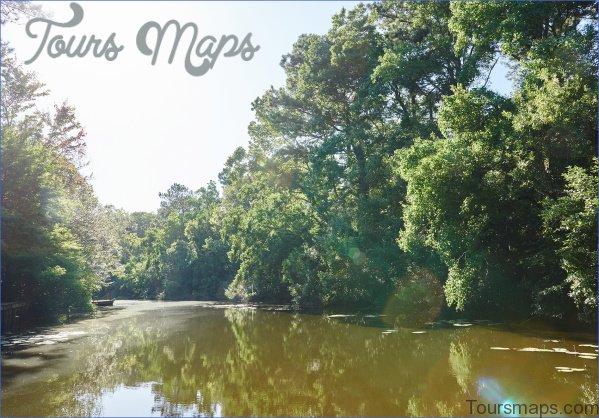 louisiana wetlands keeping it local in covington 14 Louisiana Wetlands Keeping it Local in Covington