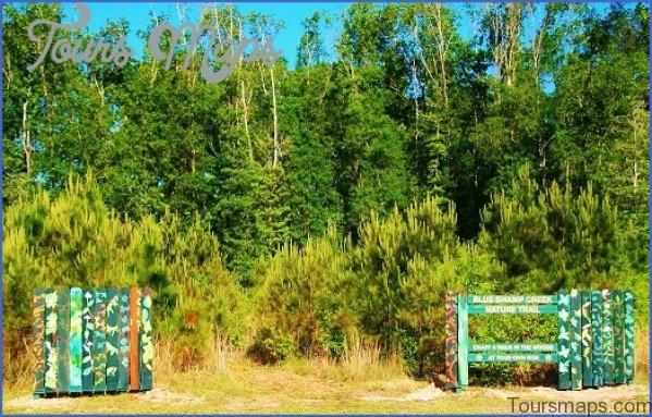 louisiana wetlands keeping it local in covington 5 Louisiana Wetlands Keeping it Local in Covington