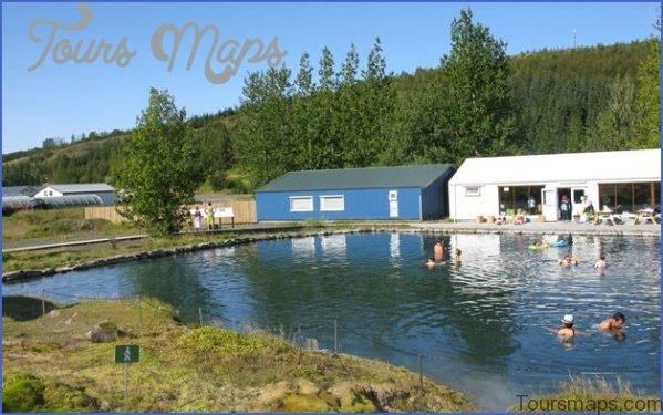 secret lagoon buffet dinner and northern lights tour from reykjavik 11 Northern Lights Tour from Reykjavik