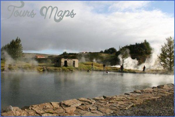 secret lagoon buffet dinner and northern lights tour from reykjavik 16 Northern Lights Tour from Reykjavik