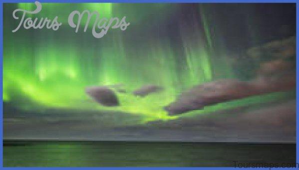 secret lagoon buffet dinner and northern lights tour from reykjavik 3 Northern Lights Tour from Reykjavik