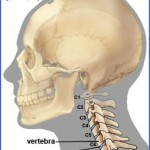 treatment options for back neck and disc injury when traveling 5 150x150 Treatment Options for Back, Neck and Disc Injury When Traveling