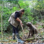 truffle hunting and wine experience from florence 1 150x150 Truffle Hunting and Wine Experience from Florence