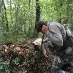truffle hunting and wine experience from florence 10 150x150 Truffle Hunting and Wine Experience from Florence